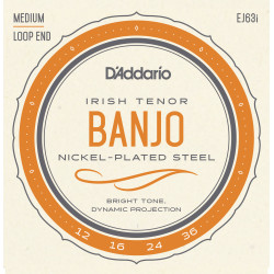 D'Addario EJ63i Irish Tenor Banjo Strings, Nickel, 9-30